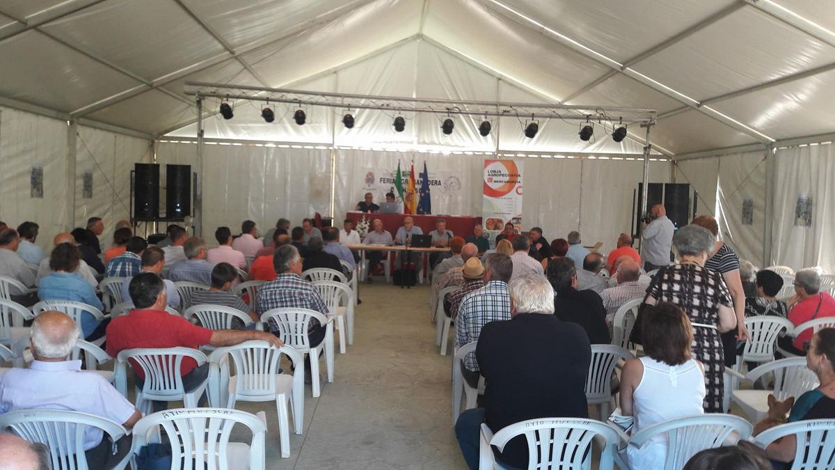24-09-2016-lonja-de-ovino-huescar-1