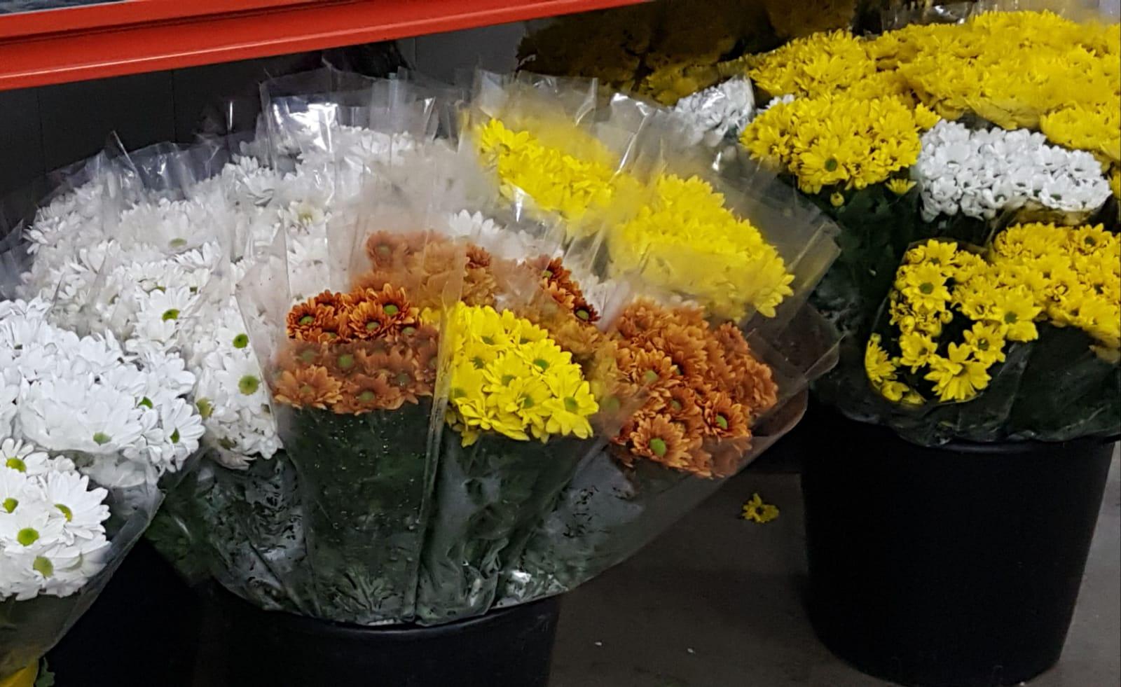 flores San Valentin