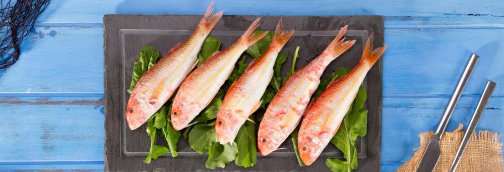 ¿Qué pescados podemos comer en verano?